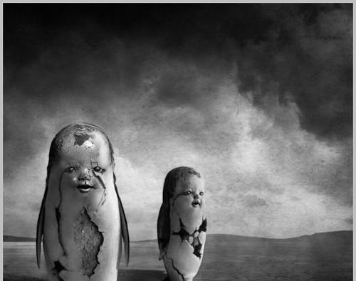 عکس های سیاه و سفید زیبا و هنری