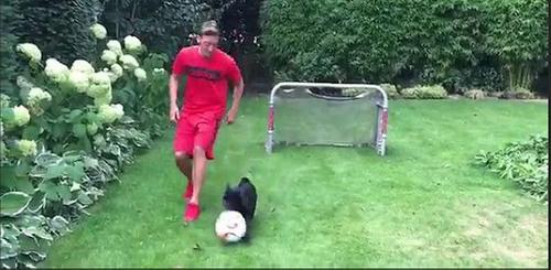 این سگ باهوش یک فوتبالیست حرفه ای است (عکس)