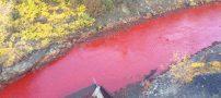 وحشت مردم از این رودخانه ی خون آلود (عکس)