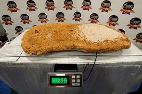بزرگترین ناگت مرغ جهان را مشاهده کنید (عکس)