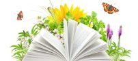 شعری خواندنی و زیبا از حافظ