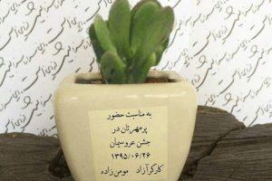 با متفاوت ترین کارت عروسی این زوج ایرانی آشنا شوید (عکس)