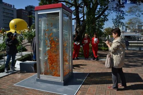 عکس هایی از زیباترین تلفن عمومی دنیا