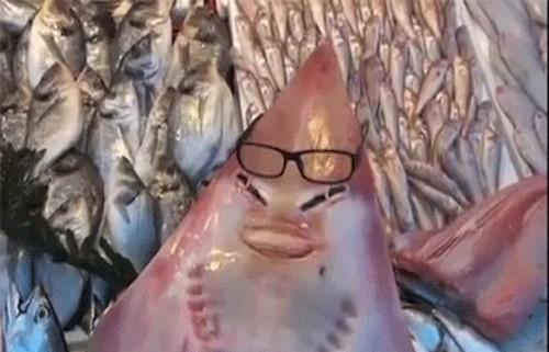 صورت این ماهی شبیه به صورت انسان می باشد (عکس)