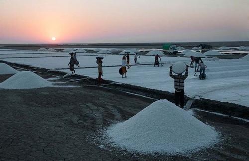 عکس هایی از کارگران در حال استخراج نمک