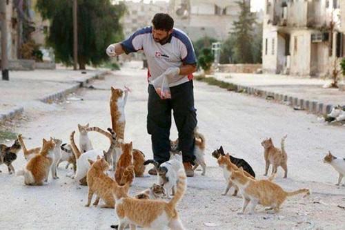 این شخص به مرد گربه ای معروف است (عکس)