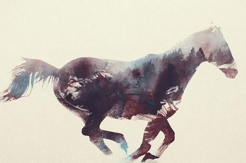 دانستنی هایی درباره ی روح حیوانات