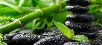 راهی برای نگهداری بهتر از گل بامبو