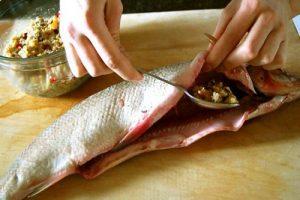 چگونه ماهی شکم پر درست کنیم؟