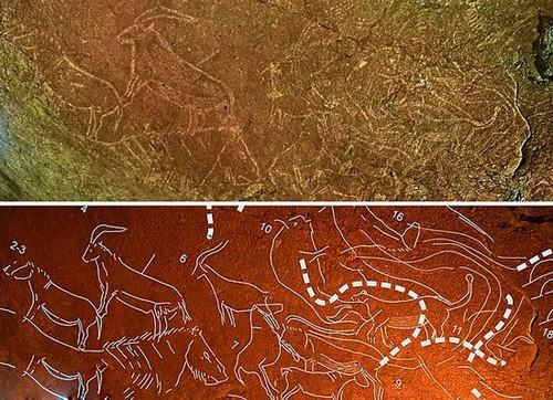 کشف یک نقاشی 14 هزار ساله در اسپانیا (عکس)