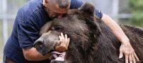 دوستی جالب این مرد با یک خرس غول پیکر (عکس)