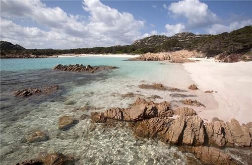 عکس های دیدنی از تنها ساحل صورتی جهان