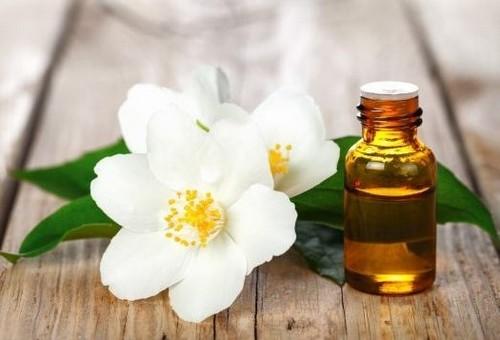 از خواص جالب روغن گل یاس چه می دانید؟