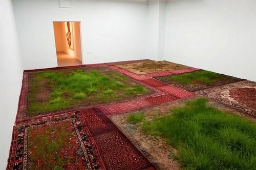 عکس هایی از چمن های کاشته شده بروی فرش