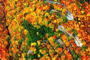 این جاده ی باورنکردنی در ژاپن می باشد (عکس)