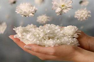 زیباترین نوشته ها در مورد آرامش و زندگی