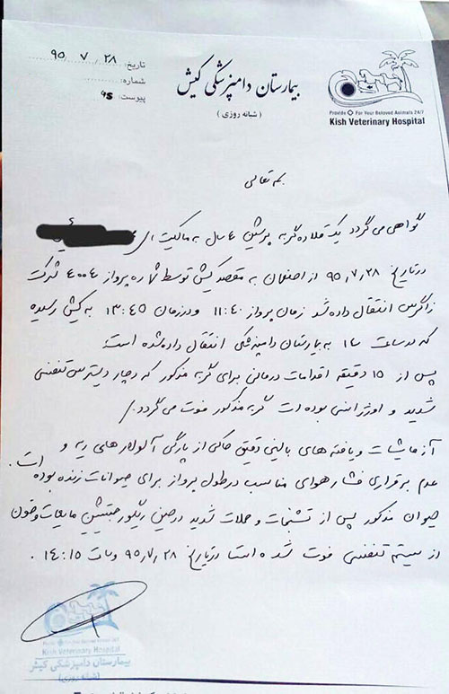 گواهی فوت گربه در پرواز اصفهان به کیش +عکس