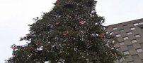 سوژه شدن زشت ترین درخت کریسمس