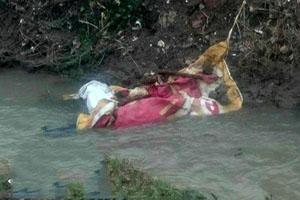 جزئیات قتل هولناک مدیر باشگاه بانوان لاهیجان +تصاویر