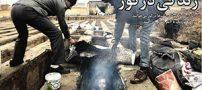 جزئیات ماجرای گورخواب ها در قبرستان نصیر آباد +تصاویر