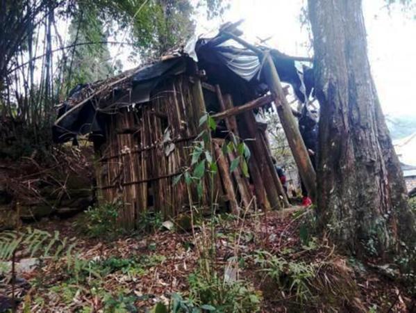 زنی که ده سال در قفس جنگلی زندگی کرد (عکس)