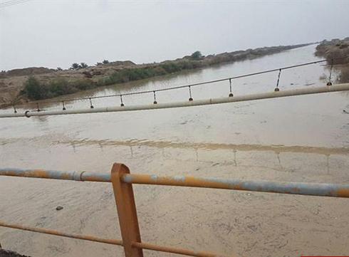 سیل بوشهر و حمله مارهای سمی به این شهر (تصاویر)