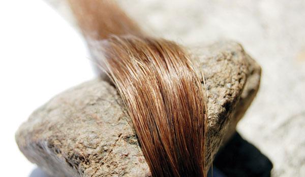 زیباترین رنگ موهای مد سال جدید