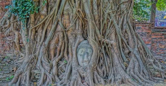 تفریح و خوشگذرانی در کشور تایلند (عکس)