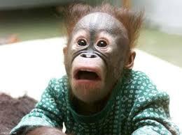 پسری نگون بخت با چهره ترسناک (عکس)