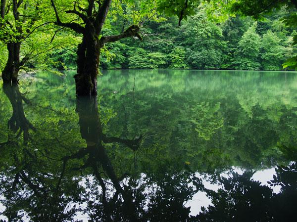 عکس هایی از طبیعت شگفت انگیز و پنهانی چورت