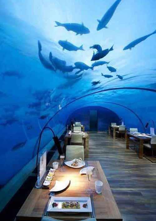 عکس هایی از شگفت انگیزترین رستوران در یک زیر دریایی