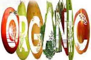 خوراکی های بسیار سالم و مفید اما گران