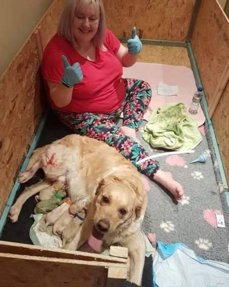 تولد عجیب ترین و بامزه ترین توله سگ در دنیا (عکس)