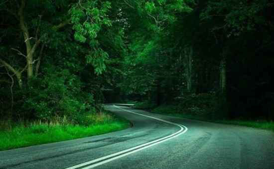 دیدن این جاده های رویایی و زیبا رو از دست ندهید