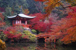 با زیباترین معابد ژاپن آشنا شوید (عکس)