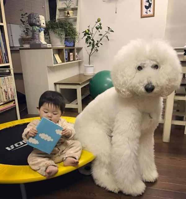 رابطه عجیب این دختر با سگ زیبایش رسانه ای شد (عکس)