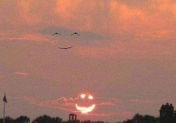 جدیدترین عکس های خنده دار سراسر دنیا