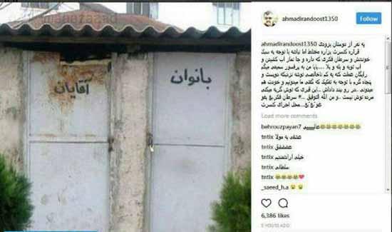 مشت محکم و کوبنده غول برره به امیر تتلو (عکس)