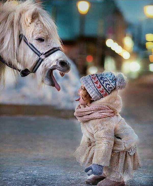 عکس های بامزه و خنده دار از همه جای دنیا
