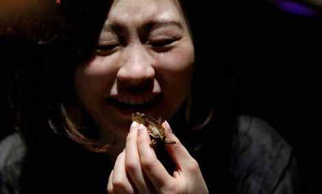 خوردن سوسک توسط این دختران زیبا (عکس)