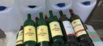 انهدام باند مخوف تولید مشروبات الکلی تقلبی (عکس)
