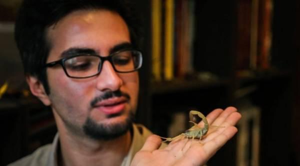 با مرد عنکبوتی ایرانی آشنا شوید (عکس)