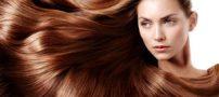 بهترین روغن برای رشد سریع مو