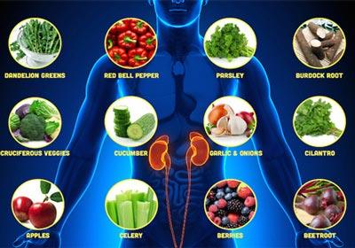 سبزیجاتی که باعث تقویت کلیه ها و رفع سنگ کلیه می شود