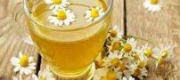 معرفی 7 چای گیاهی برای لاغری بدن و کاهش وزن