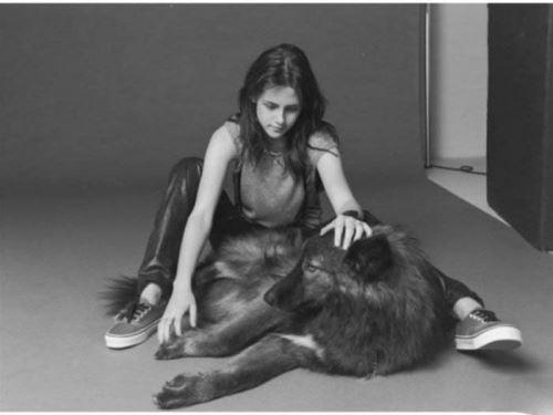 تصاویر عجیب ترین حیوانات خانگی سلبریتی ها