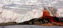 حقایقی بسیار عجیب درباره قطب جنوب (عکس)