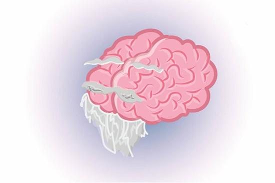 حقایقی بسیار عجیب و شگفت انگیز درباره مغز