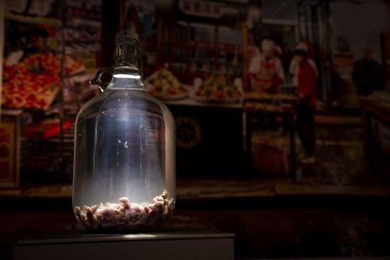 موزه عجیبی از غذاهای چندش آور (عکس)