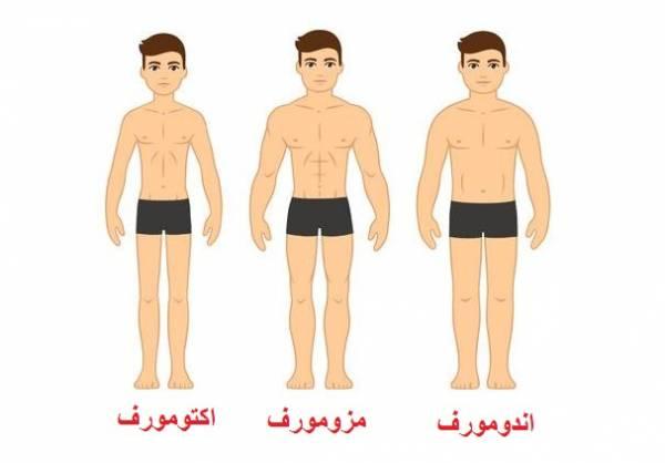 بهترین نوع رژیم برای تیپ بدنی ما کدام است